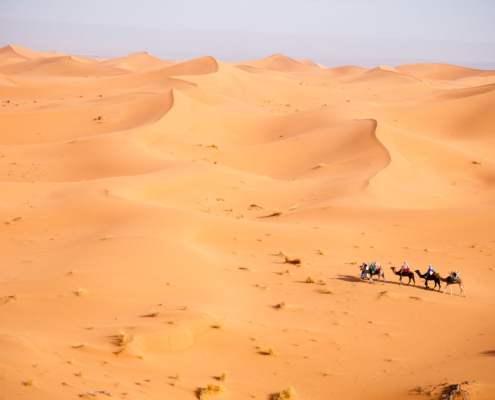 Kafila 3 mois, du désert à l'océan