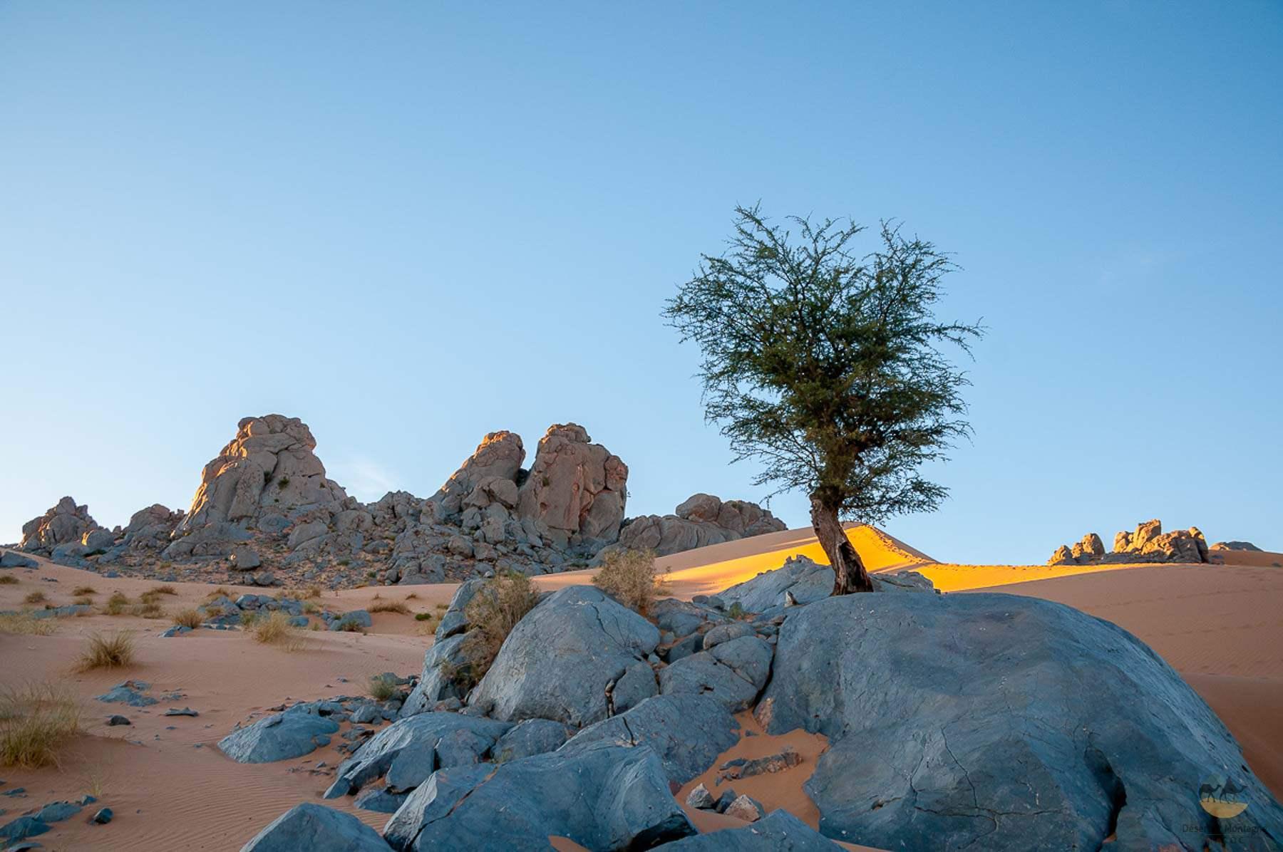 Désert Isk, Maroc